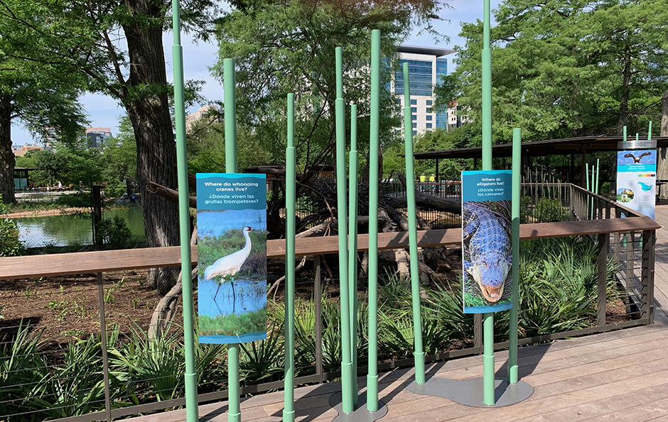Texas Wetlands interpretive exhibits
