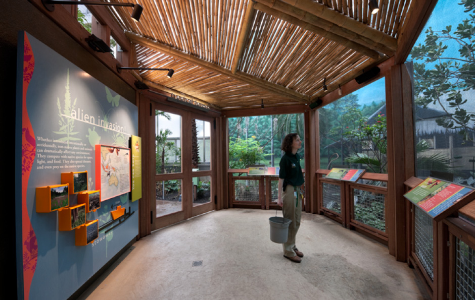 zoo exhibit design, zoo design, exhibit design, environmental graphics, Main Street Design, Philadelphia Zoo Aviary