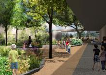 Houston Arboretum's Nature Center